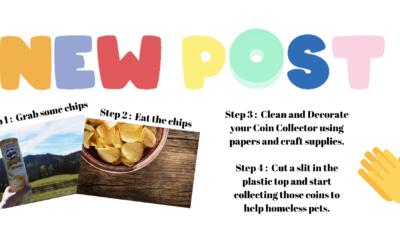 Pringles Can Family Fundraiser